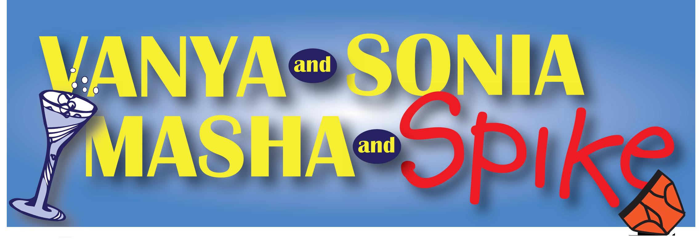 VSMS_logo horizontal CD